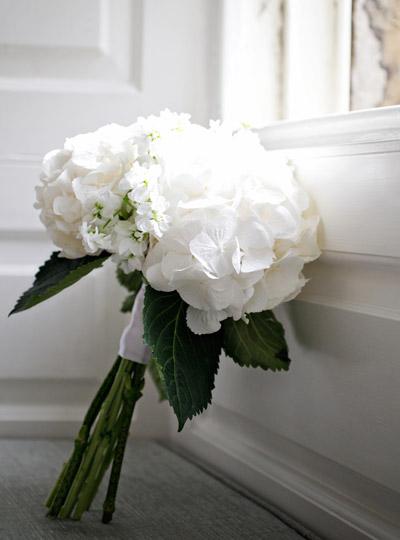 Wedding Bouquet Ideas White : White wedding bouquet idea belsflowers